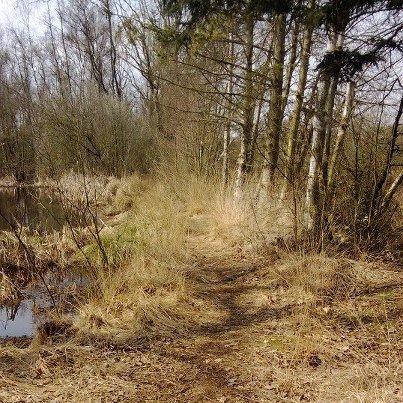 foto: WLOB Trailrunning